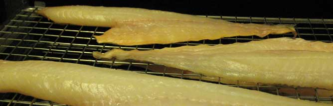 Glossy Finnan Haddie on the racks after smoking for over 8 hours in the Torry kiln